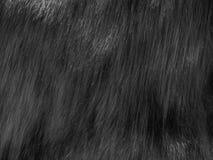 Fake Fur Royalty Free Stock Images