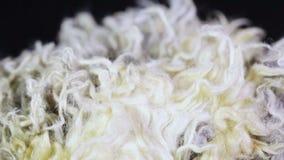 Fake fur texture stock footage