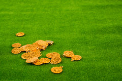 Fake gold coins on grass Stock Image