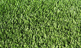 Fake Grass Stock Image