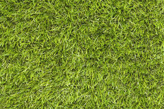 Fake Grass Royalty Free Stock Photos
