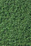 Fake Grass used on sports fields Stock Photos