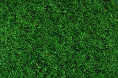 Fake Grass used on sports fields. For soccer, baseball and football Royalty Free Stock Images