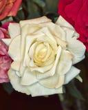 Fake handmade pale white rose flower Stock Photo