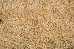 Fake hay background Royalty Free Stock Photos