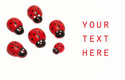Ladybugs and copy space. Fake ladybugs on a white background with copy space Stock Images