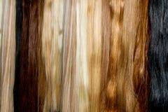 Fake long hair Royalty Free Stock Photography