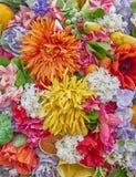 Fake orange and yellow flowers closeup Stock Photos