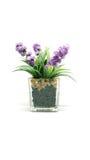 Fake plastic flower Stock Images