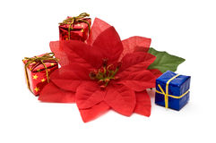 Fake poinsettia with gift boxes Royalty Free Stock Photography