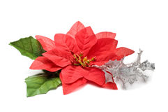 Fake poinsettia with silver branch Stock Images
