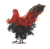 Fake red and black rooster Royalty Free Stock Image