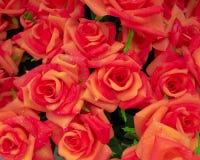 Fake roses bunch Royalty Free Stock Photos