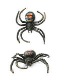 Fake rubber spider toy isolated Royalty Free Stock Photo