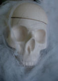 Fake skull with fake spider webs around it Stock Image