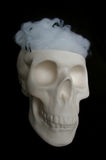 Fake skull with spider webs in its head Royalty Free Stock Photo