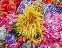 Fake sunflower and roses closeup Stock Photos