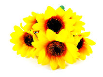 Fake sunflower Stock Photos
