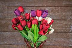 Fake tulips on wall Royalty Free Stock Photo
