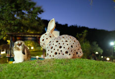 Fake Vs Real rabbit, Thailand. The real rabbit is sitting sleepy in the front of the fake rabbit, Suanpeung, Thailand Stock Photography