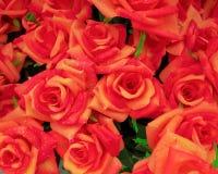 Fake wet roses closeup Stock Image