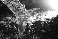 Faktiska ljusa hjortar på den ljusa showen i Moskvabakgrund Fotografering för Bildbyråer