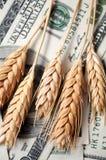 fakturerar guld- piggar för dollar royaltyfri foto