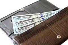 fakturerar plånboken för dollar hundra Royaltyfria Bilder