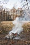 Falò di fumo alla foresta immagini stock libere da diritti