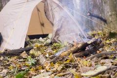 Falò e tenda di campeggio nella foresta Fotografie Stock Libere da Diritti