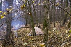 Falò e tenda di campeggio nella foresta Fotografia Stock