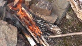 Falò, fiamma calda di fuoco archivi video
