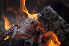 falò Legno del fuoco Grigliando e cucinando fuoco Woodfire con le fiamme Immagini Stock Libere da Diritti