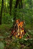 Falò nella foresta Fotografia Stock