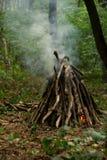 Falò nella foresta Fotografia Stock Libera da Diritti