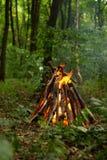 Falò nella foresta Immagini Stock Libere da Diritti