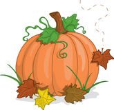 Fal pumpkin. Full color vibrant illustration of a fall pumkin with falling leaves stock illustration