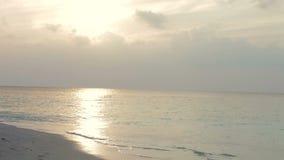 Fala Łama Na Opustoszałej Tropikalnej plaży W wieczór świetle zdjęcie wideo