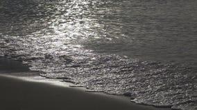 Fala ciepły morze biegają na piaskowatej plaży w ranku wcześnie, zwolnione tempo zbiory wideo