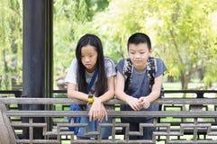 Fala da irmã e do irmão Imagem de Stock