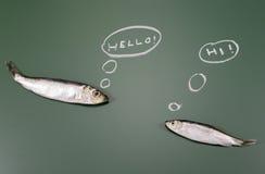 Fala dos peixes Imagem de Stock