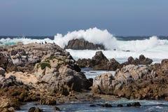 Fala i Skalisty wybrzeże w Monterey zatoce, Kalifornia Fotografia Stock