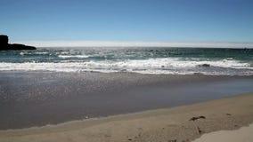 Fala Myje Up Na Mokrej Piaskowatej plaży zbiory