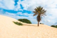 Fala na piasek diunach w Chaves wyrzucać na brzeg Praia De Chaves w Boavist obrazy royalty free