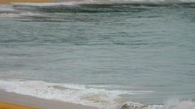 Fala na piaskowatej plaży zdjęcie wideo