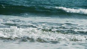Fala na piaskowatej plaży, biały przypływ zbiory wideo