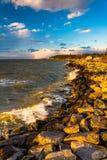 Fala na skałach na Chesapeake zatoce w Tilghman wyspie, Maryla Obraz Stock