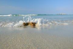 Fala przy plażowym białym piaskiem Zdjęcia Royalty Free