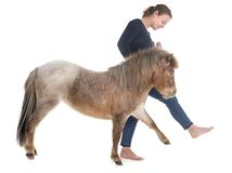 Falabella miniature horse and girl. In front of white background Stock Photo