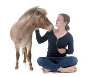 Falabella miniature horse and girl. In front of white background Royalty Free Stock Photos
